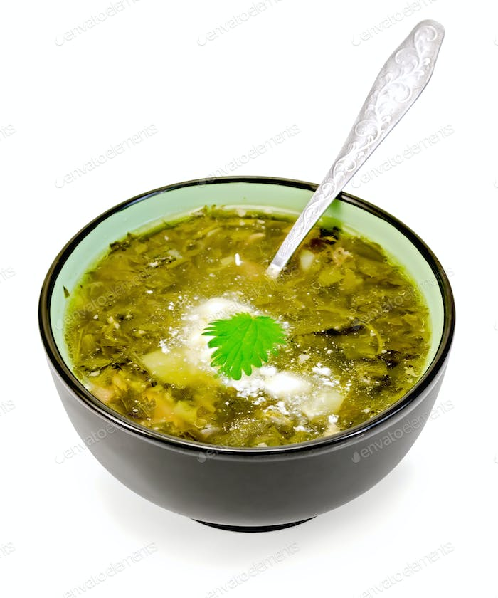 Soup green nettle