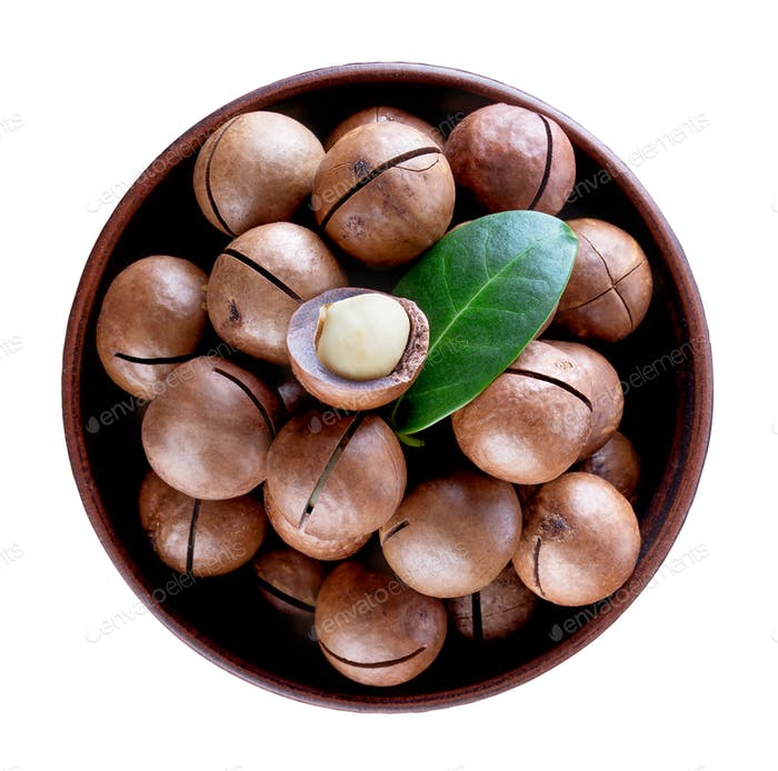 Australian macadamia nut with green leaf in brown clay plate