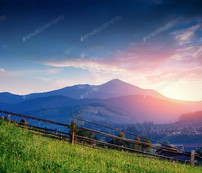 Alps mountain meadow tranquil summer view
