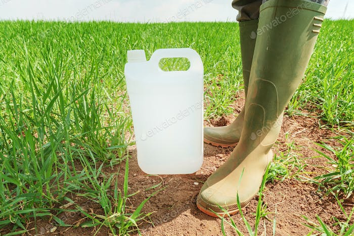 Farmer standing over insecticide jug in wheatgrass field