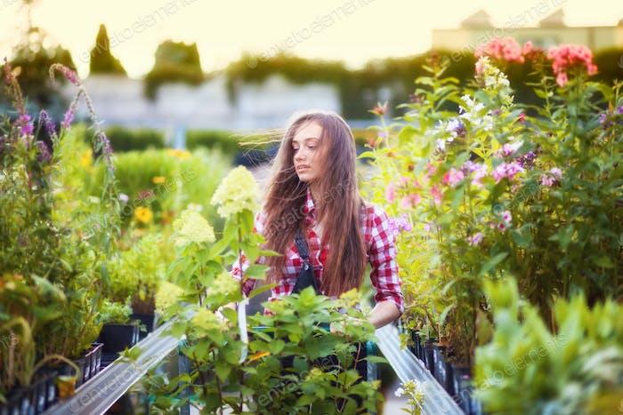 Садовник женщина с корзиной, выбирая растения и гуляя по аллее в садовом центре