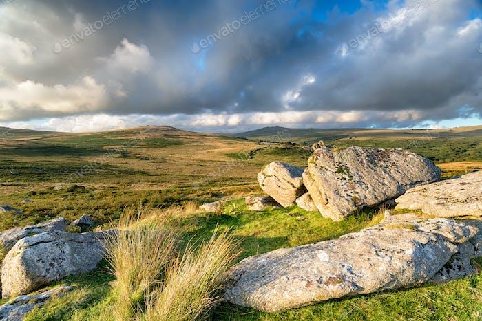 Heckwood Tor on Dartmoor