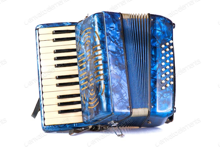 Blue Accordion popular musical instrument