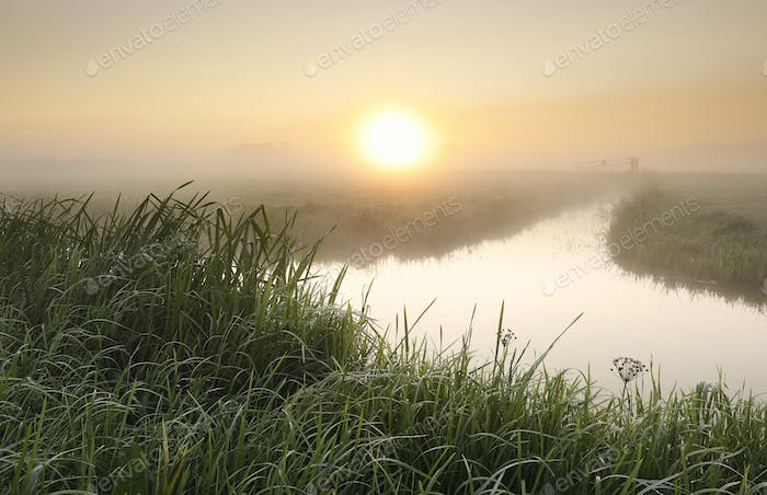 misty sunrise over river in countryside