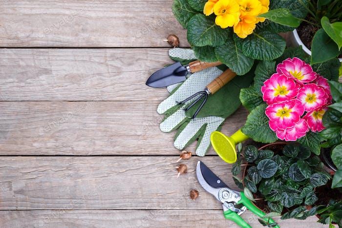 Gartengeräte und Blumen flach legen