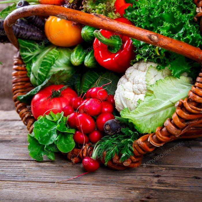 Großer Korb mit verschiedenen frischen Bauerngemüse. Ernte. Lebensmittel oder gesunde Ernährung