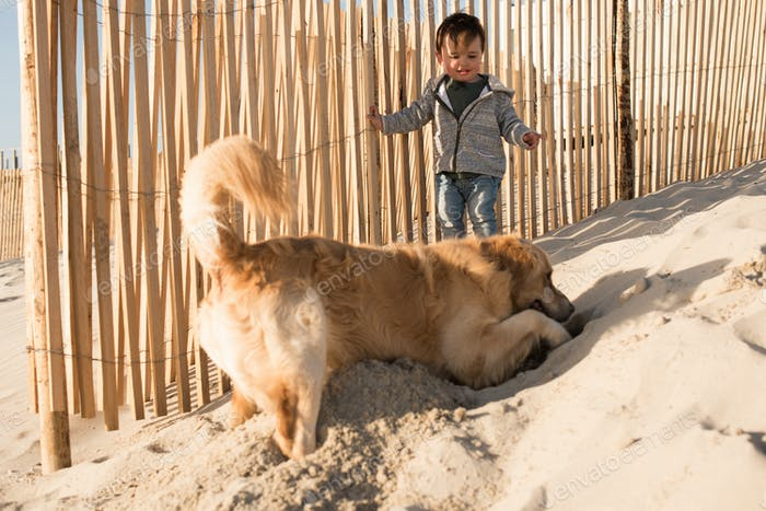 Toddler with dog on the beach