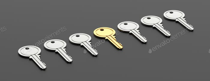 Gold key, best choice concept. House keys, one gold against black background, banner.