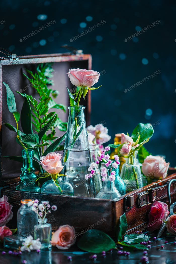 Flower still life. Roses and leaves in vintage glass bottles close-up. Botany and perfume header on