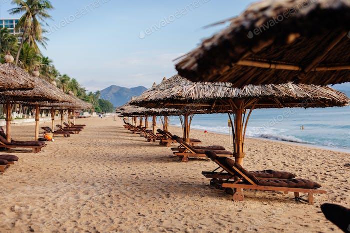 beach resort with sunbeds
