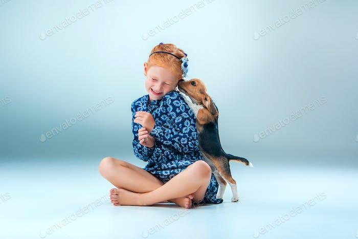 Das glückliche Mädchen und ein Beagle Welpen auf grauem Hintergrund