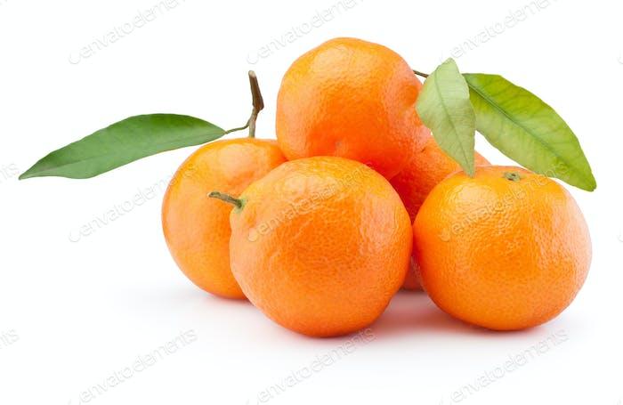 Frische Mandarinen Orangen Früchte mit Blättern isoliert auf weißem Bac