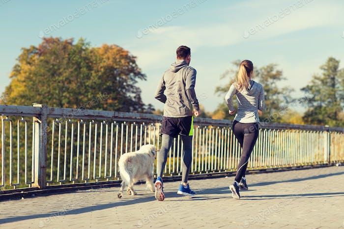 paar mit Hund laufen im freien
