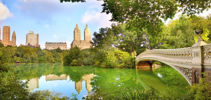 NYC Central Park panorama