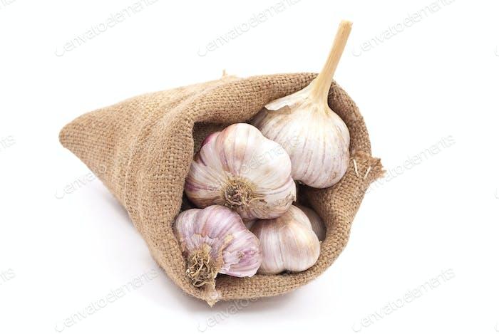 Burlap sack with garlic