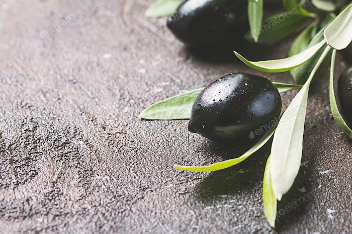 Oliven auf Zweig mit Blättern
