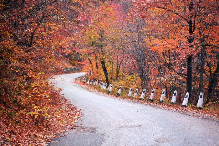 DorogAutumn road in mountain. a aypetri 2011 2 doroga krasnaya 2 krop