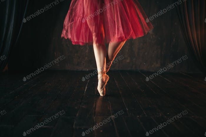 Female ballet dancer legs in pointes