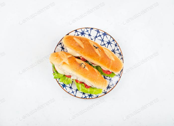Baguette sandwich with tomatoes and cheese
