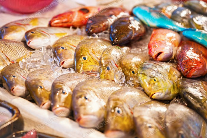 Different kinds of fish for sale at fish market in Asia