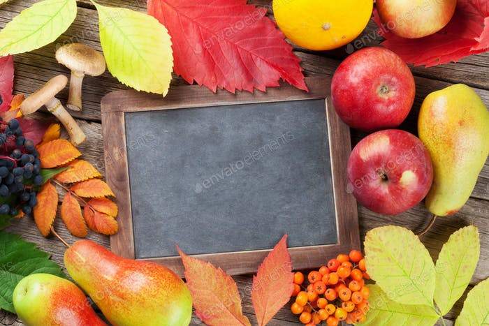 Autumn chalkboard with fruits, mushrooms