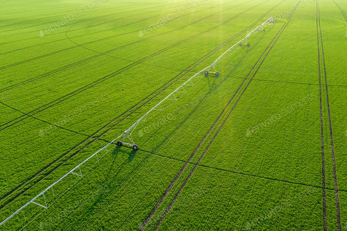 Aerial view of center-pivot irrigation sprinkler in wheat field