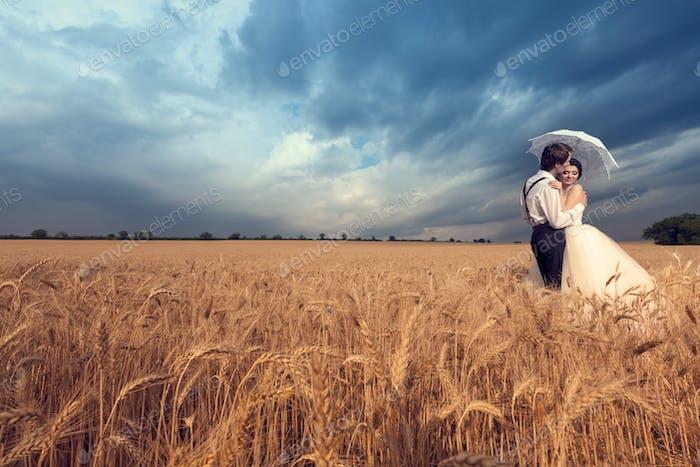 Bräutigam küssen die Braut im Weizenfeld