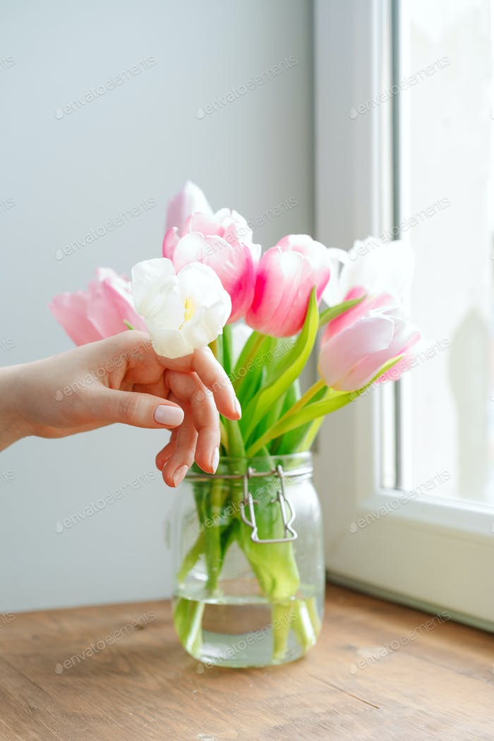 Woman hand touching buds of tulips in a vase on windowsill
