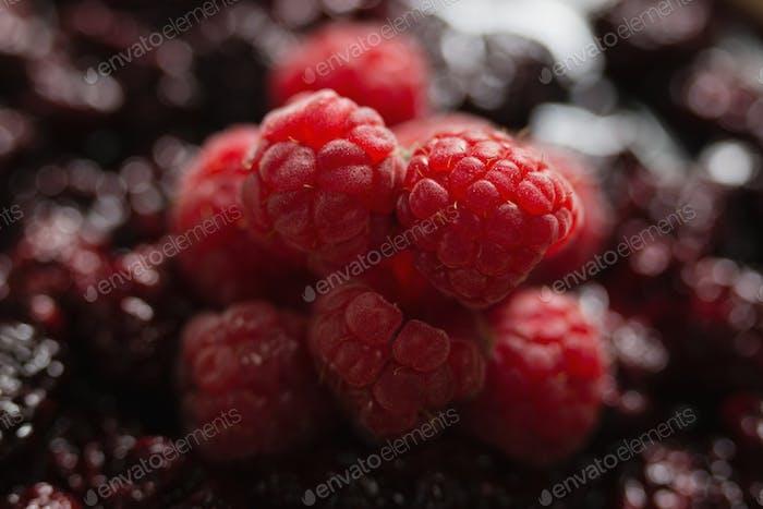 Raspberries and blackberries tart