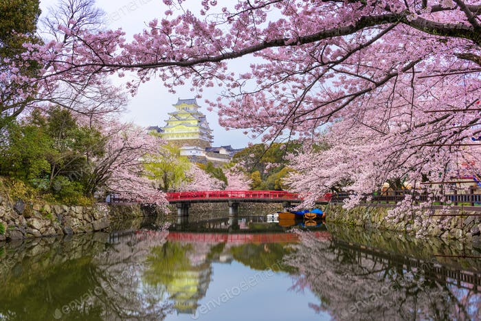 Himeji Castle and Moat in Spring