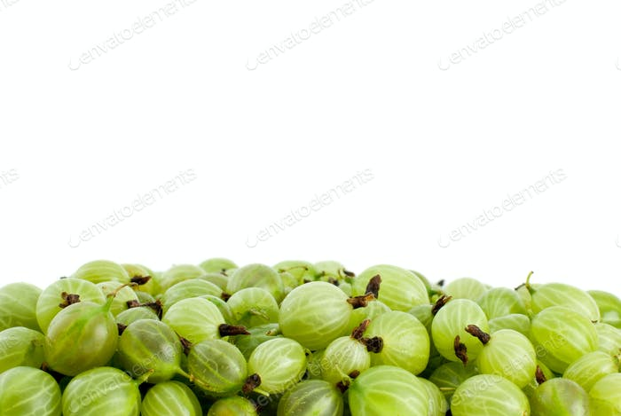 Pile of green gooseberries