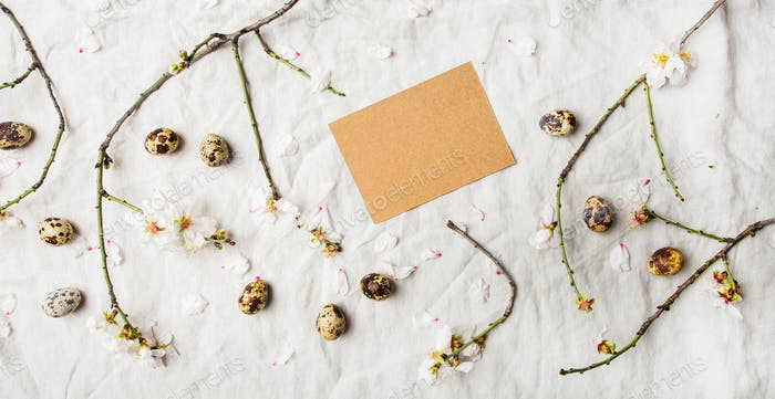 Easter holiday flat-lay with quail eggs and almond tree branches