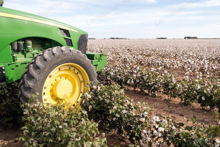 Cotton Farm Field Texas Plantage Traktor Landwirtschaft Bargeld Ernte