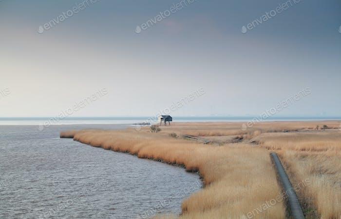 camino en la costa de Dollard