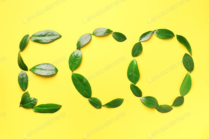 Word Eco made of green leaves on yellow background. Top view. Flat lay. Ecology, eco friendly planet