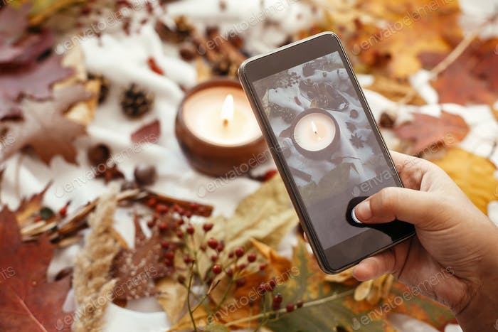 Hand holding phone and taking photo of stylish autumn flat lay of fall leaves, candle, berries