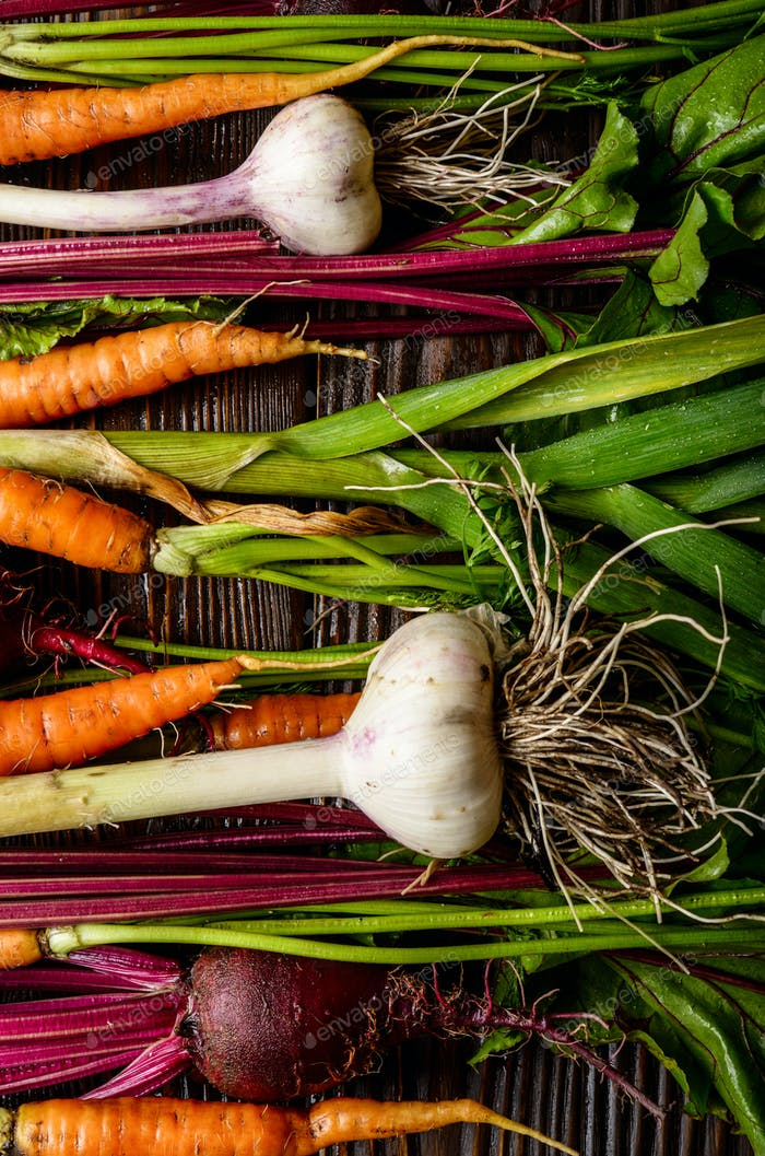 Vegetarian background of fresh organic beetroots green garlic and carrots