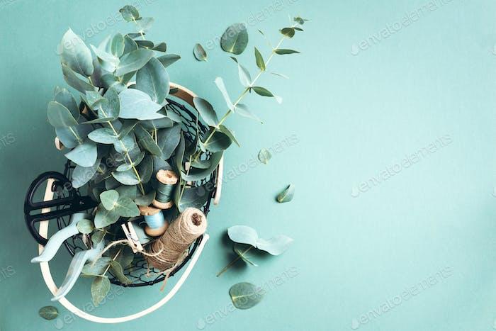 Korb mit Eukalyptusblüten, Gartenschere, Schere über grünem Hintergrund. Floristenkonzept, oben