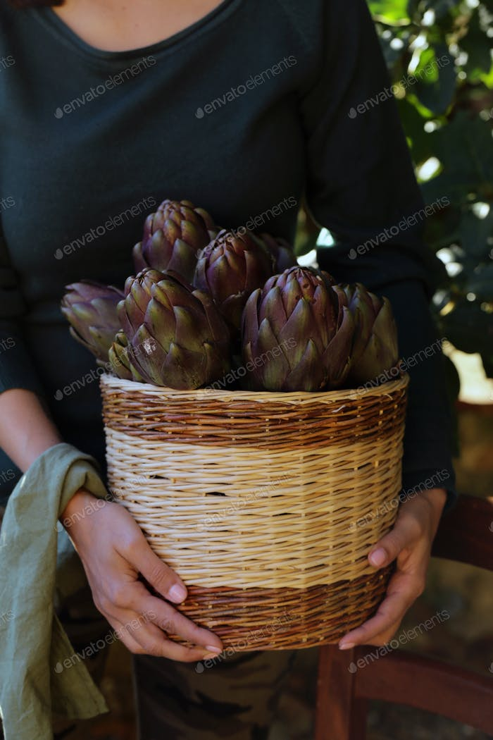 Purple Vegetables Artichokes