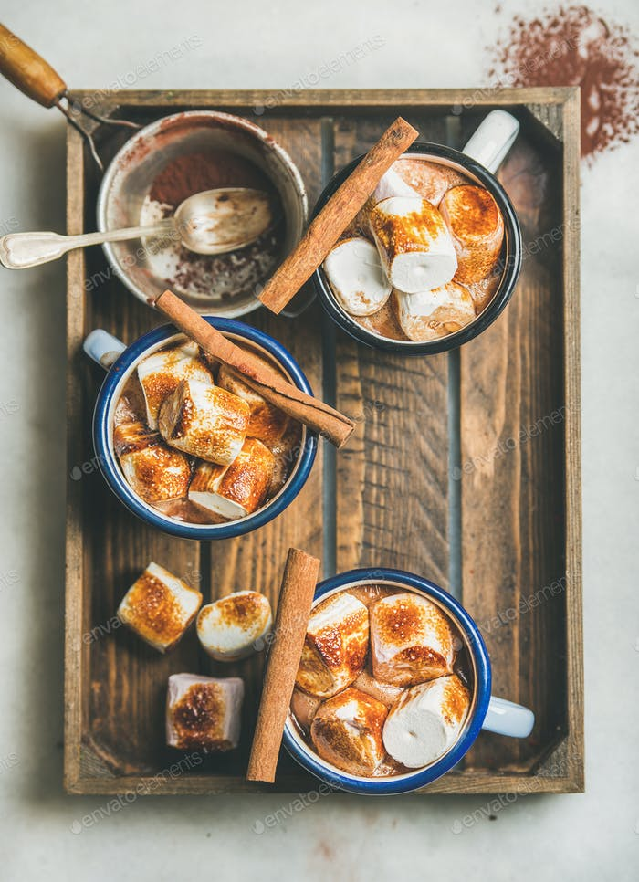 Hot chocolate with cinnamon and roasted marshmallows