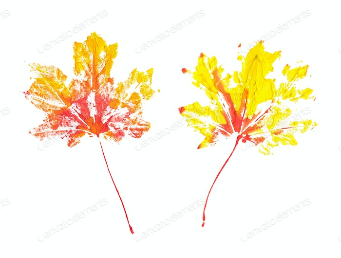 Two autumn maple leaves imprint watercolor