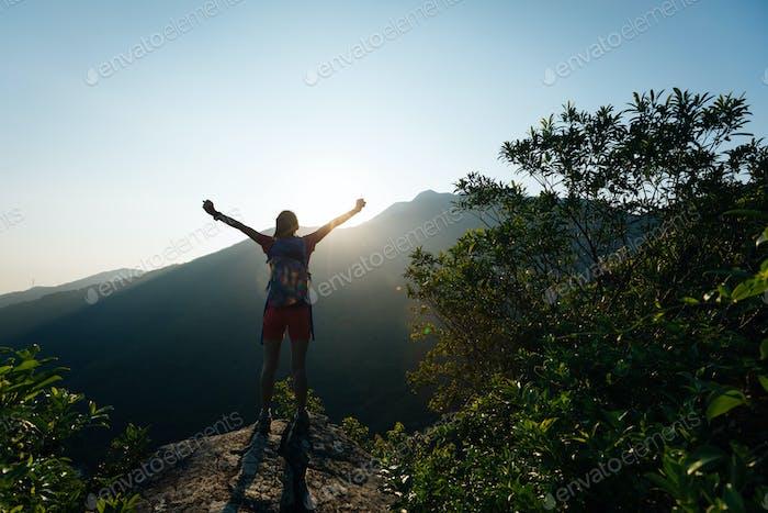 Frische Luft im sommerlichen Morgenwald atmen