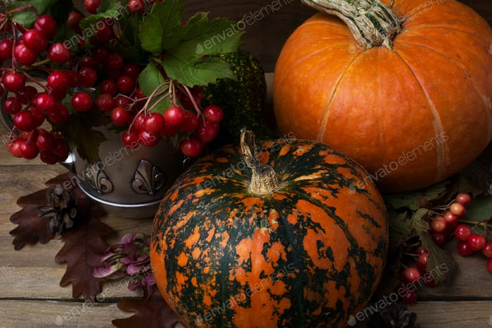 Rustic cornucopia decor with red berry and pumpkins