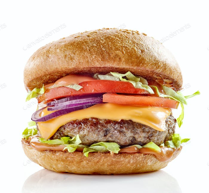 fresh tasty burger