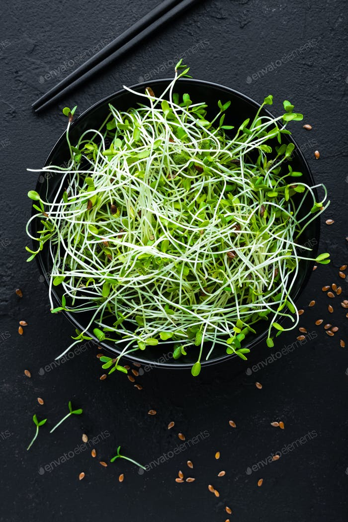 Healthy vegetarian bowl dish with fresh flaxseed sprouts