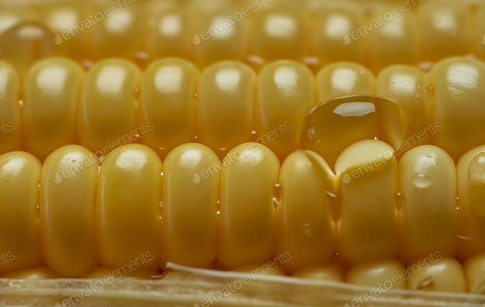 close-up view of the yellow corn seeds