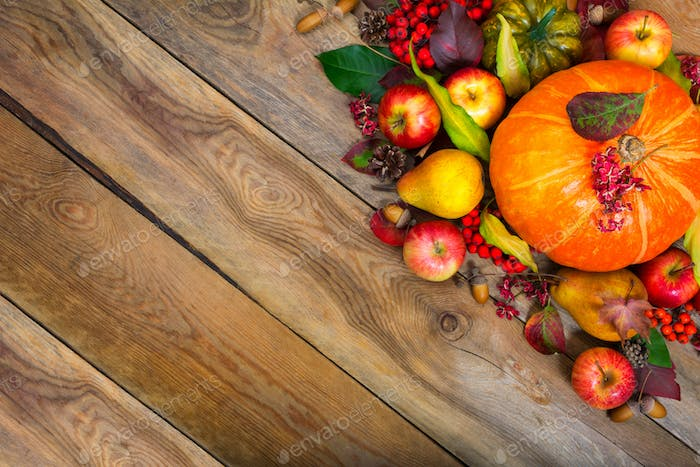 Thanksgiving greeting background with pumpkin, apples, pear, cop