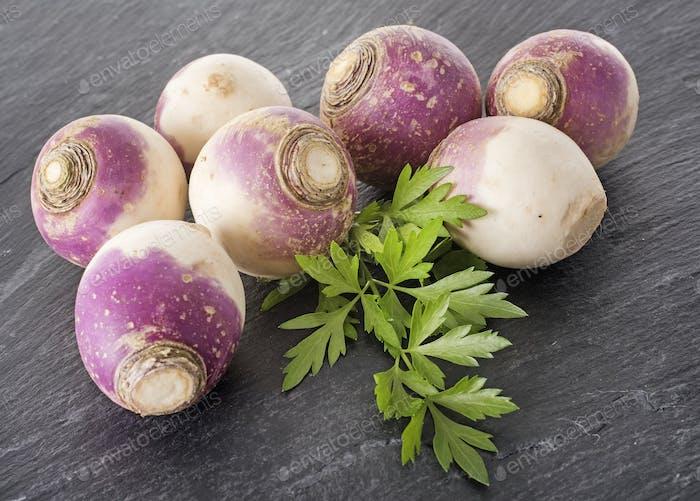 turnip in studio