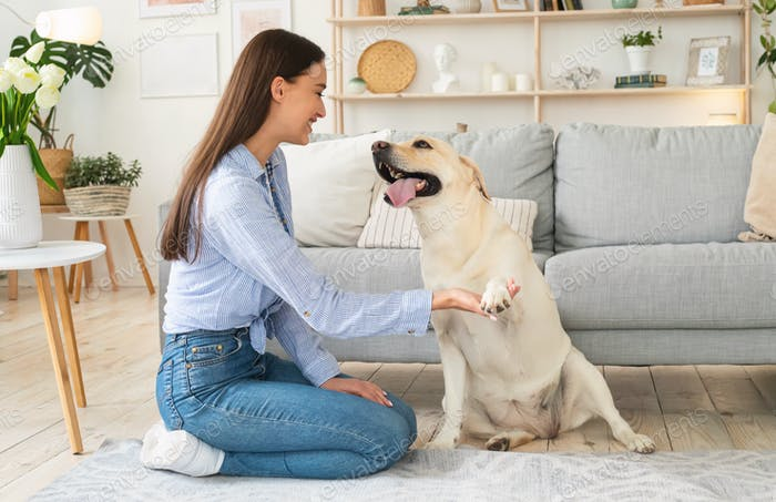 Beautiful woman playing with dog in the living room