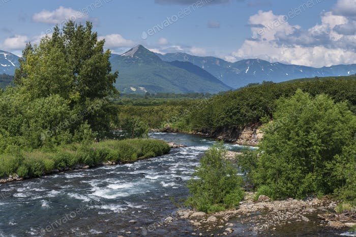 Stunning Summer Panorama Landscape of Mountain River in Kamchatka Peninsula